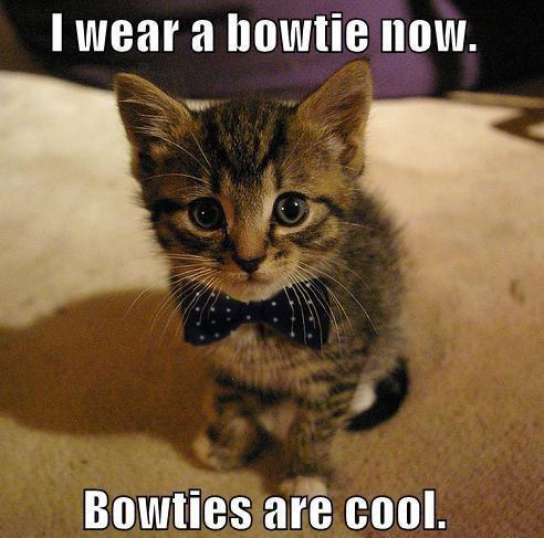 KittyBowTie